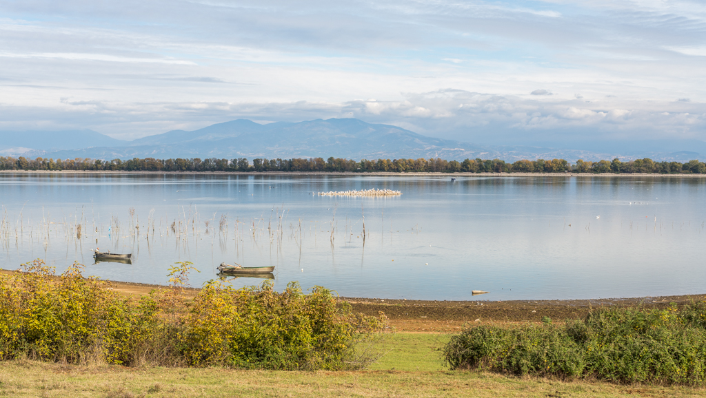 Lake Kerkini near Lithotopos damn