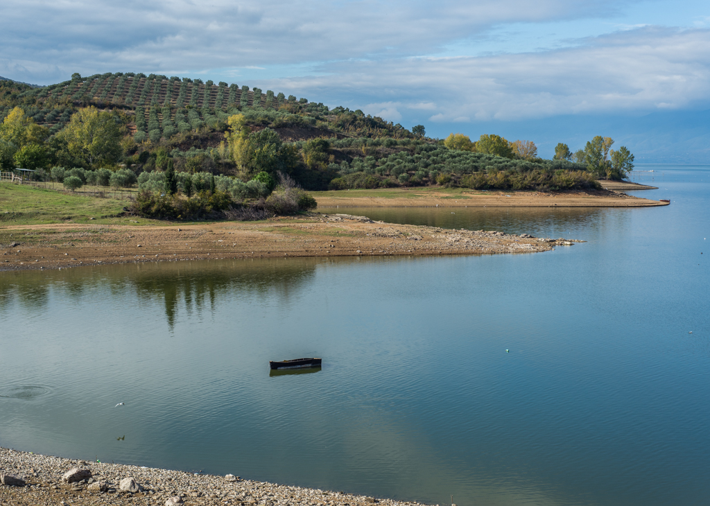 Lake boat and olive tress