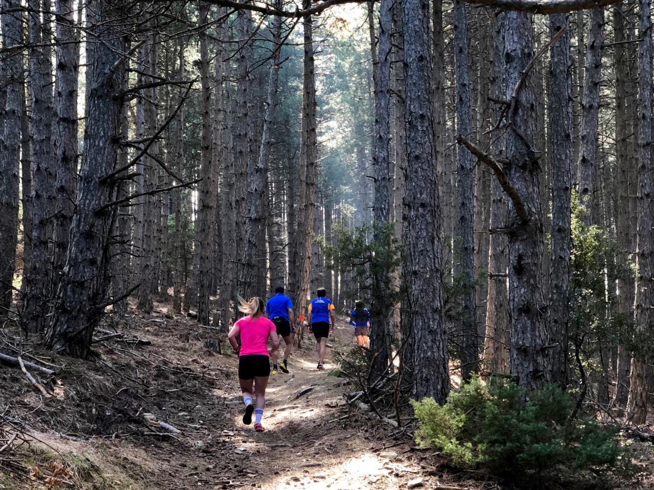 Χορτιάτης Trail Run 2019
